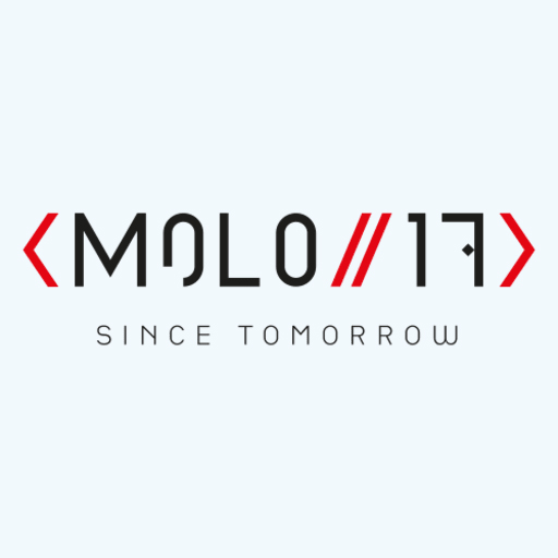 MOLO17's logo as a texture map